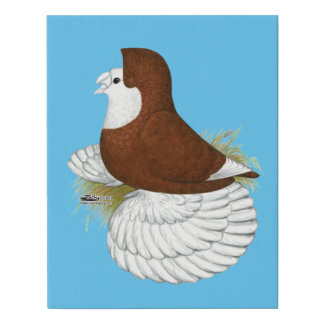 Trumpeter Pigeon Red Baldhead Faux Canvas Print