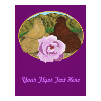 Trumpeter Pigeons and Rose Flyer