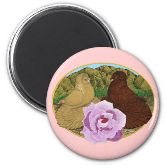 Trumpeter Pigeons and Rose Fridge Magnets