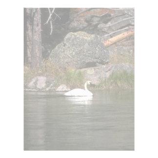 Trumpeter Swan Letterhead