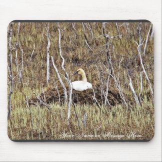 Trumpeter Swan on Nest Mouse Pads