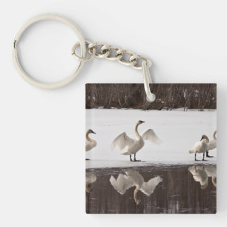 Trumpeter Swan Pairs Keychain