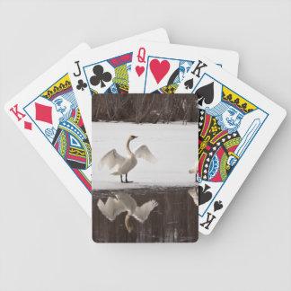 Trumpeter Swan Pairs Card Decks