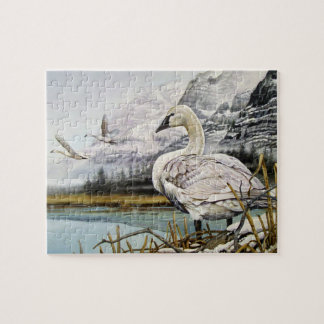 Trumpeter Swan Puzzle