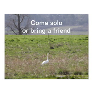 Trumpeter Swan San Juan Island Birthday|Sympathy 4.25x5.5 Paper Invitation Card