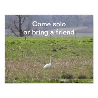 Trumpeter Swan San Juan Island Birthday|Sympathy Invite