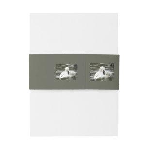 swan bands