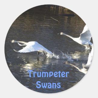 Trumpeter Swans Birdlover's Wildlife Sticker