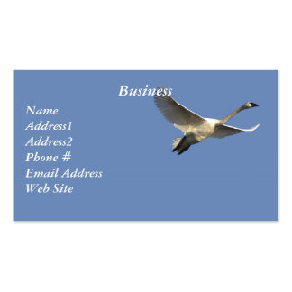 Trumpeter Swans Business Cards