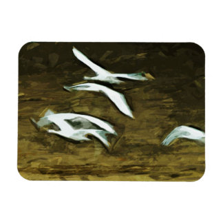 Trumpeter Swans in Flight Abstract Impressionism Vinyl Magnets