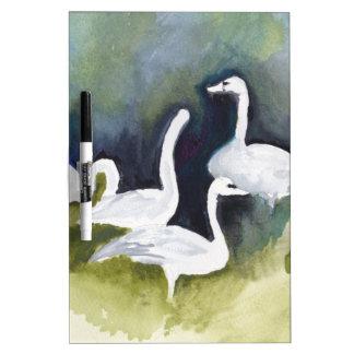 Trumpeter Swans in Skagit Valley Dry-Erase Board
