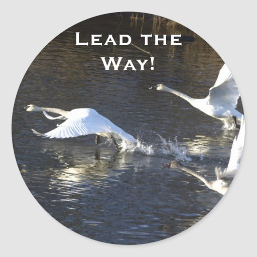 Trumpeter Swans Motivational Gifts Round Stickers