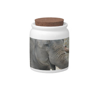 Trumpeting Elephant Candy Jar