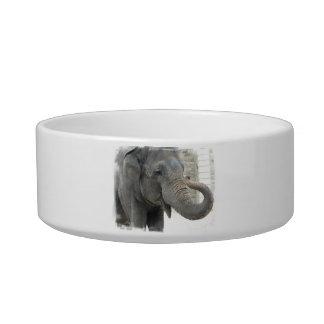 Trumpeting Elephant Pet Bowl Cat Water Bowl