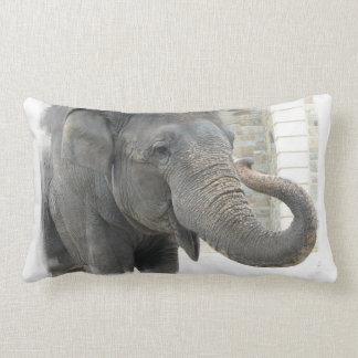 Trumpeting Elephant Pillow