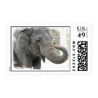 Trumpeting Elephant Postage Stamp
