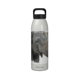 Trumpeting Elephant Water Bottle