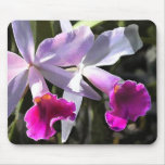 Trumpeting Purple Orchids Mouse Pad
