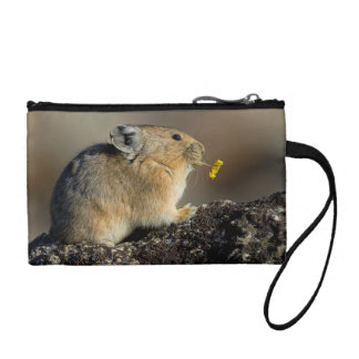 Trumpeting the Sunrise Coin Purse