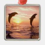 Truncatus) del Tursiops de los delfínes de Bottlen Ornamentos De Navidad