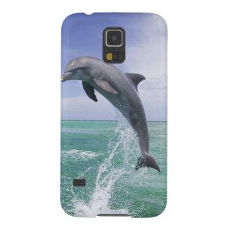 Truncatus) del Tursiops de los delfínes de Bottlen Fundas Para Galaxy S5