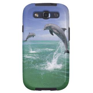 Truncatus) del Tursiops de los delfínes de Bottlen Samsung Galaxy S3 Fundas
