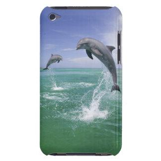 Truncatus) del Tursiops de los delfínes de Bottlen iPod Case-Mate Carcasa