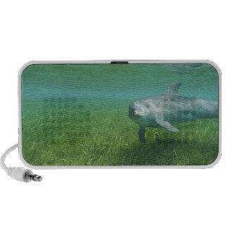 Truncatus) del Tursiops de los delfínes de Bottlen Mp3 Altavoces