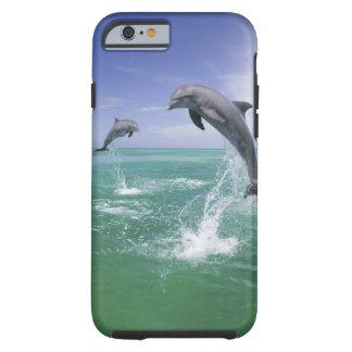 Truncatus) del Tursiops de los delfínes de Funda De iPhone 6 Tough