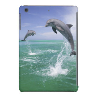 Truncatus) del Tursiops de los delfínes de Funda De iPad Mini