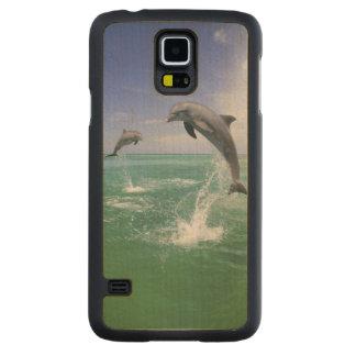 Truncatus) del Tursiops de los delfínes de Funda De Galaxy S5 Slim Arce