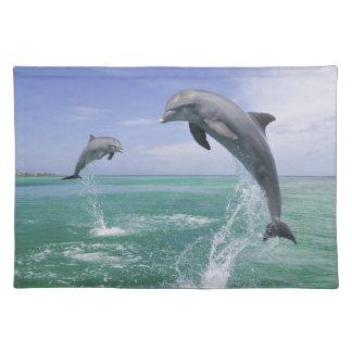 Truncatus) del Tursiops de los delfínes de Mantel Individual