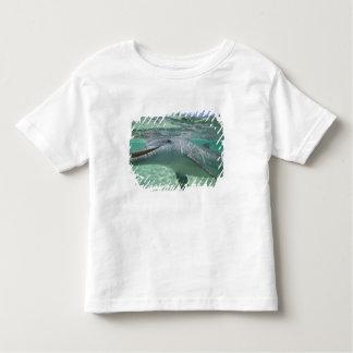 Truncatus del Tursiops del delfín de Bottlenose), Playera De Bebé