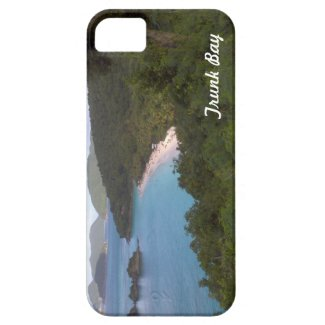 Trunk Bay Iphone 5/5s case