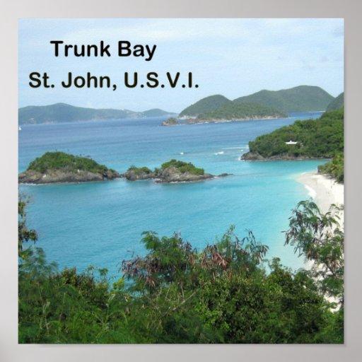 Trunk Bay Print