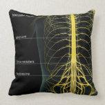 Trunk Nerve Supply Throw Pillows