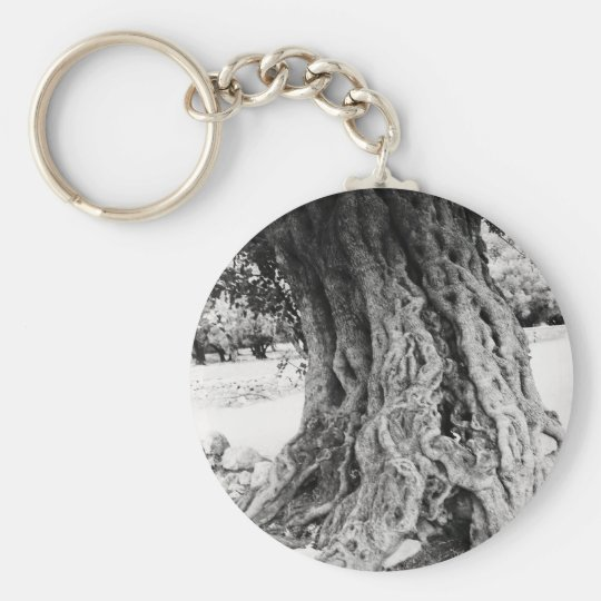 Trunk of ancient Olive tree in Greece photograph Keychain