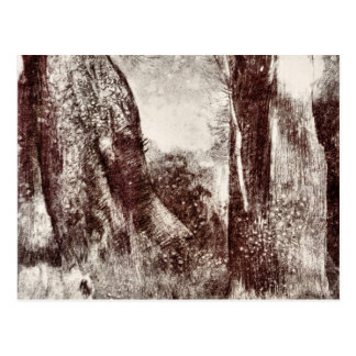 Trunks in the forest by Bertrand-Jean Redon Postcard