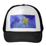 Trust God Hat