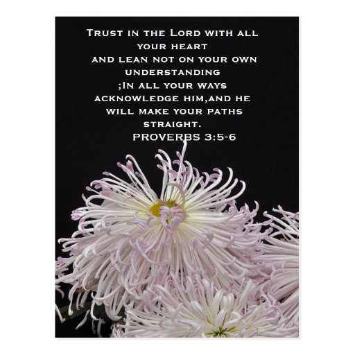 Trust in the lord Abstract colorful postcard