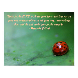 Trust in the LORD with all your heart and lean not Postcard