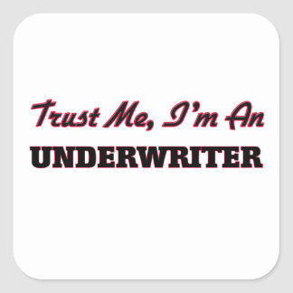 Trust me I'm an Underwriter Square Stickers