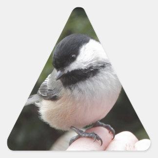 Trust Triangle Sticker