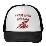 Trust Your Dragons Mesh Hats