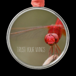 Trust Your Wings Dragonfly Custom Rearview Mirror Metal Ornament