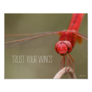 Trust Your Wings Quote Red Dragonfly 14x11 Poster