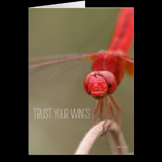 Trust Your Wings Quote Red Dragonfly Card