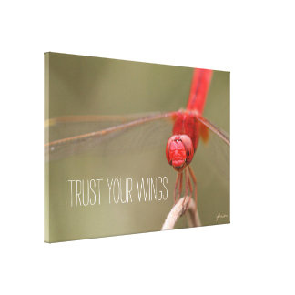 Trust Your Wings Quote Red Dragonfly CUSTOM SIZED Canvas Print