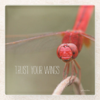 Trust Your Wings Quote Red Dragonfly Glass Coaster