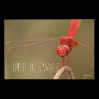 Trust Your Wings Quote Red Dragonfly Wood Wall Art